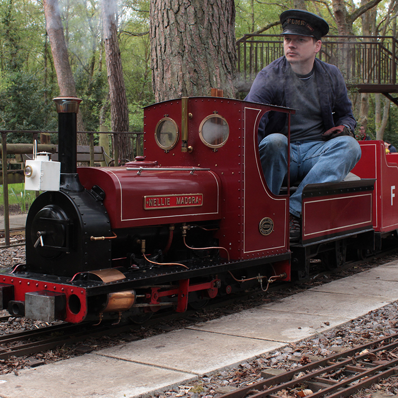 Miniature train linking to Miniature Railway page