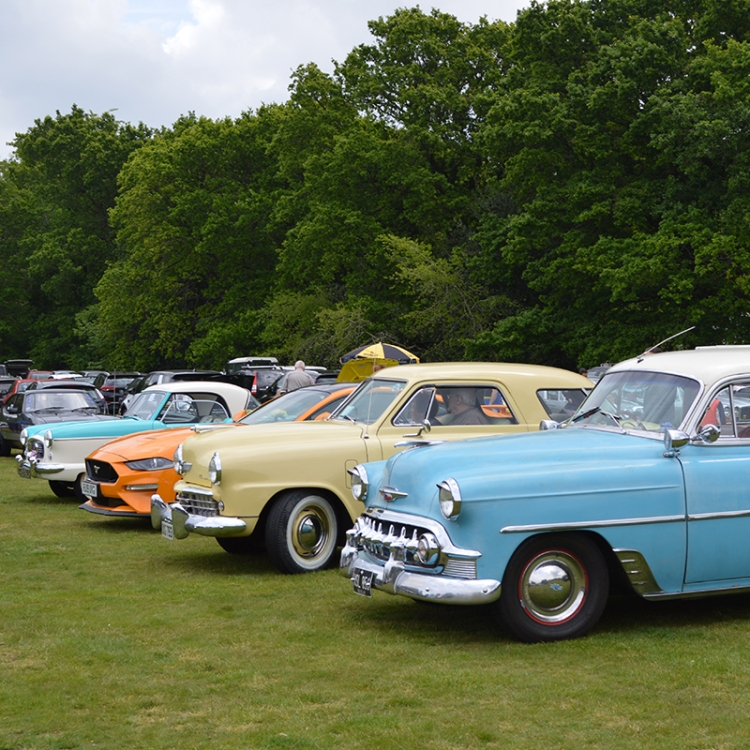 Classic Cars parked in a line